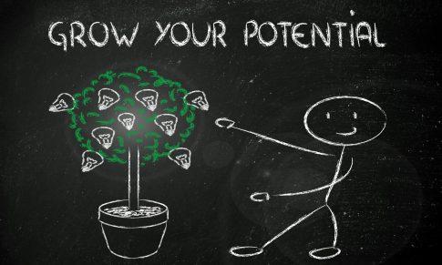 Ajudar a crescer o talento – o papel da formação