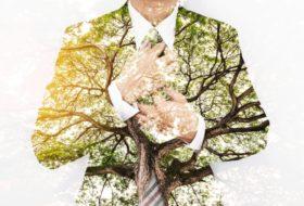 O líder 'sustentável': porque temos de reinventar as lideranças
